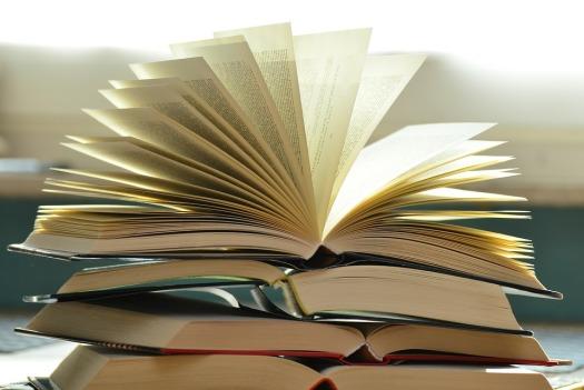 books-1082942_960_720.jpg